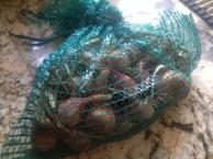 Storing homegrown shallots allotment
